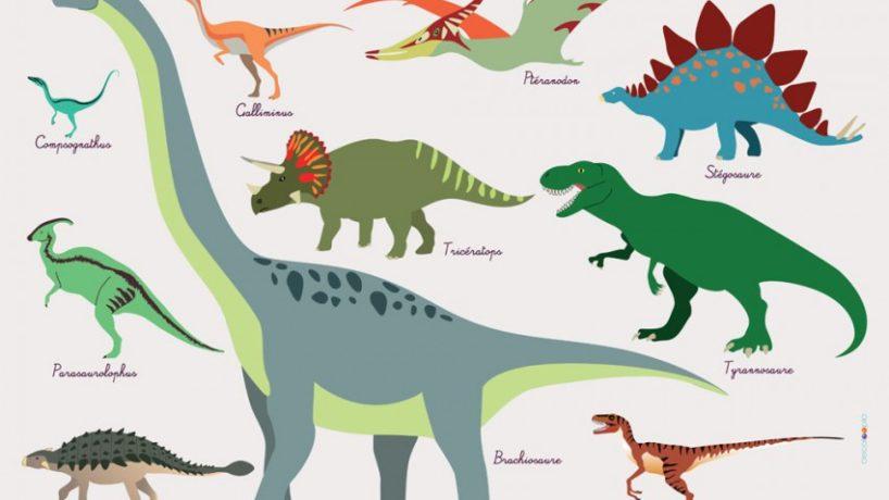 Vacances Toussaint : dinosaures et paléontologie