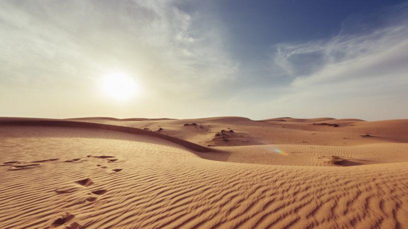 Vacances de Août : exploration des déserts